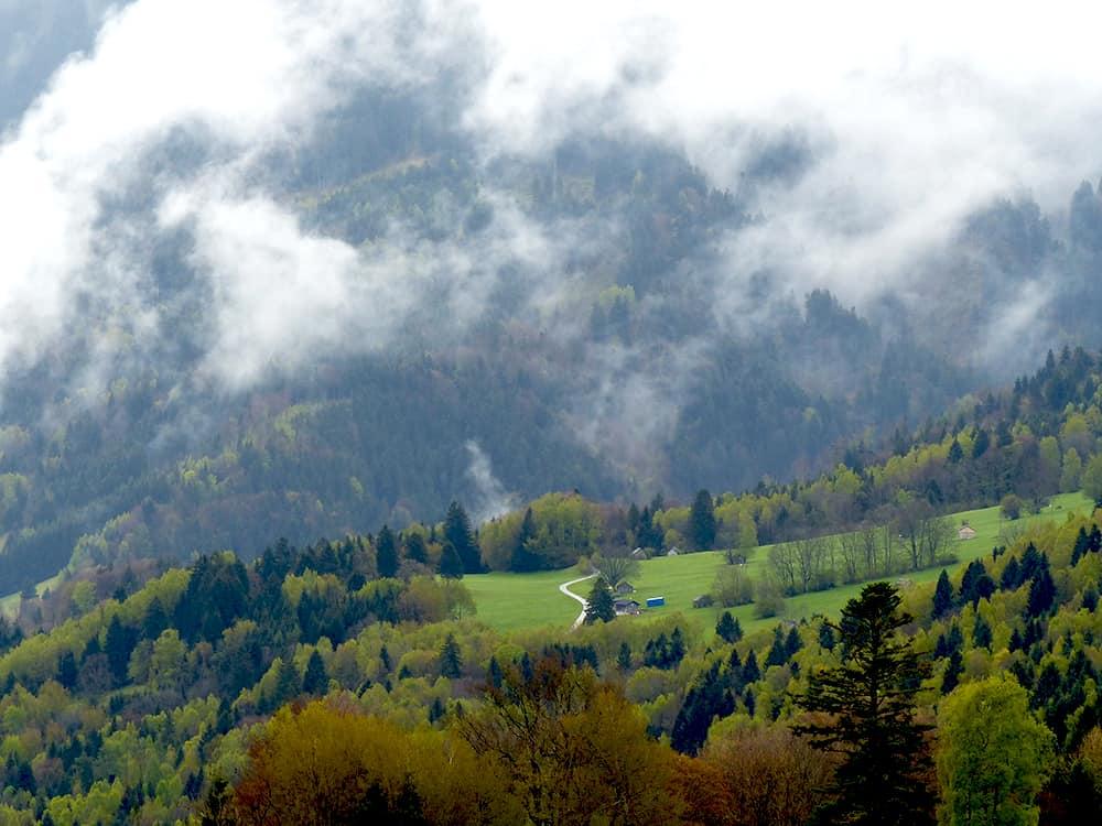View from Gurtis, Vorarlberg, Austria | Yvanne Teo